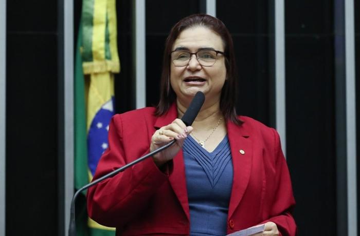 Rosa Neide, coordenadora da comissão, destacou projetos de lei que protegem o bioma, à fauna pantaneira e de auxílio emergencial à população atingida pelas queimadas