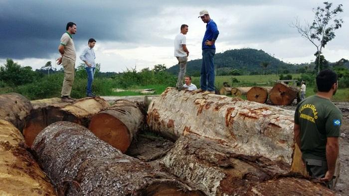 Apreensão de madeira no Mato Grosso pela Secretaria de Meio Ambiente