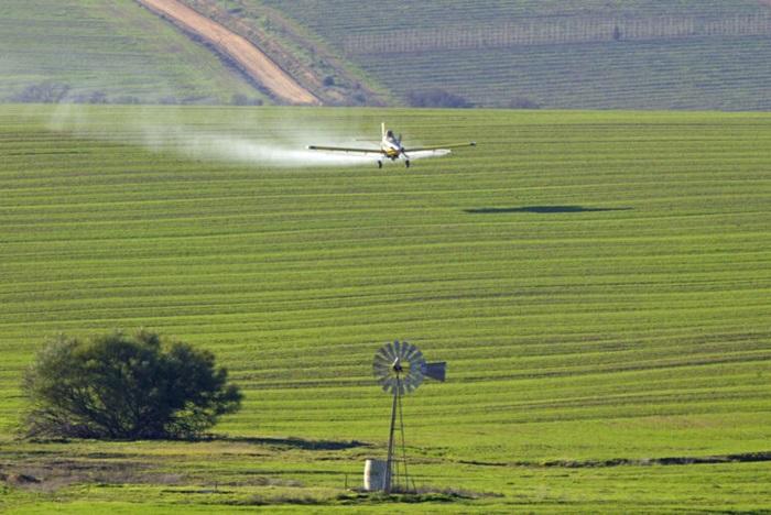 Justiça Federal vetou pulverizações em aéreas próximas ao assentamento