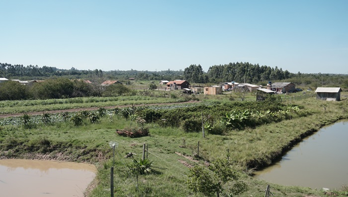 Assentamento Santa Rita de Cássia II, em Nova Santa Rita, integra o polo de produção agroecológica do MST, que se orgulha de produzir alimentos sem veneno. Ironicamente, as lavouras estão ameaçadas pelos agrotóxicos usados pelo agronegócio na região