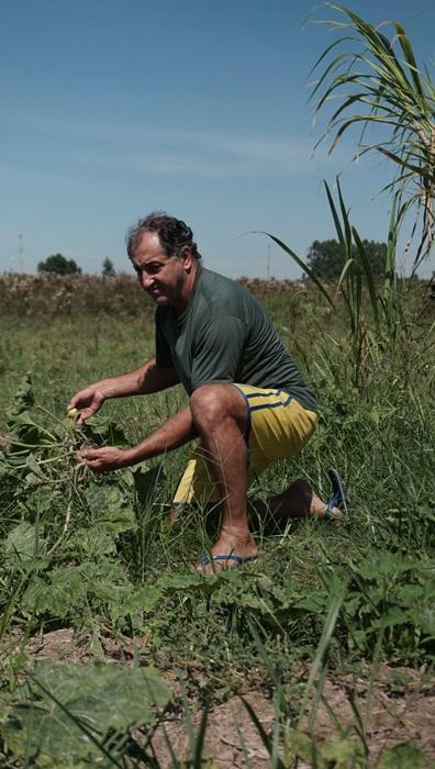 Joice dos Santos, um dos agricultores que teve a produção dizimada pela pulverização de venenos em Nova Santa Rita