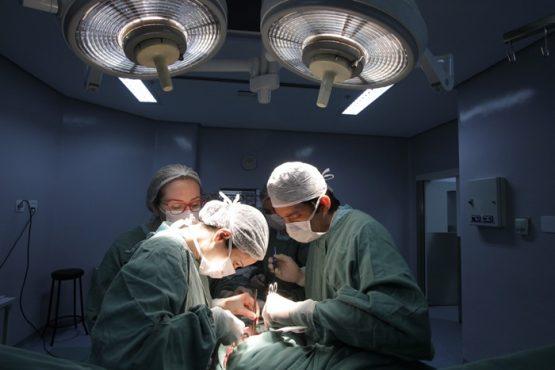 Covid-19, doenças renais e transplantes são tema de painel do Cultura Doadora | Foto: Igor Sperotto