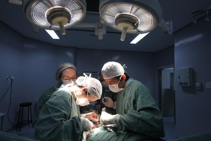 Doenças renais e transplantes serão o centro do debate promovido pelo projeto Cultura Doadora, da Ecarta