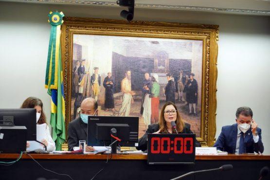 PL que descriminaliza ensino domiciliar passa na CCJ da Câmara Federal | Pablo Valadares/Câmara dos Deputados
