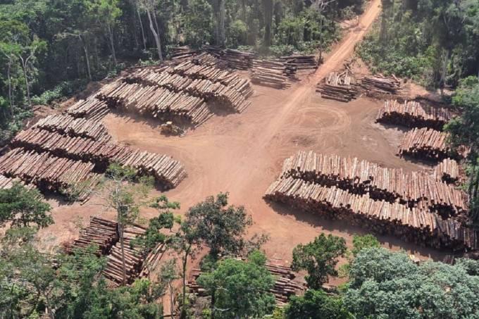 Ex-ministro tentou liberar madeiras apreendidas na maior operação da PF