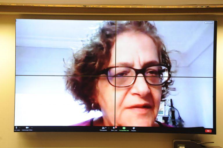 Maria Cristina Hoffmann, da Coordenação de Saúde do Idoso do Ministério da Saúde, apontou para o estigma em relação aos idosos