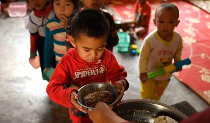 Relatório o Estado da Insegurança Alimentar e Nutricional no Mundo em 2019 indica que um em cada sete bebês nasceu abaixo do peso