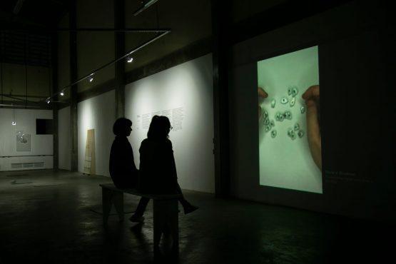 Galeria .ISTA   Foto: Braga