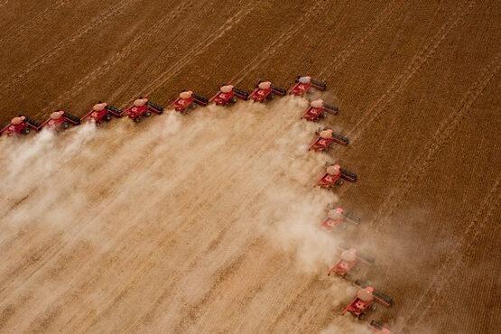 O agro colocado em xeque | Foto: Governo do Mato Grosso/Divulgação